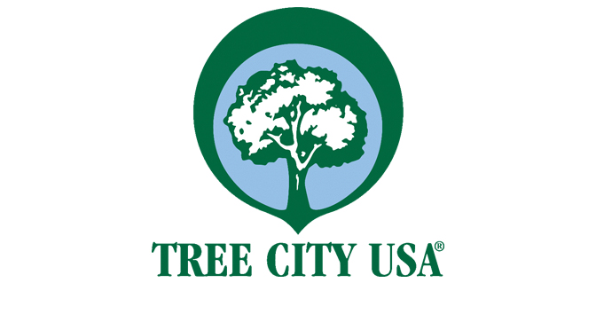 ALLENTOWN EARNS 37TH TREE CITY USA RECOGNITION