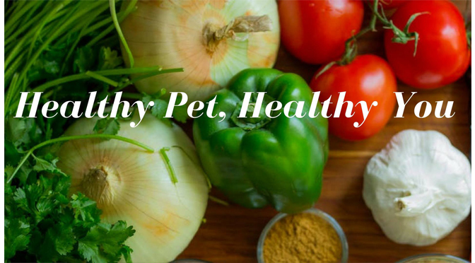 Healthy Pet, Healthy You! – Hosted by No Worries Pet Sitting