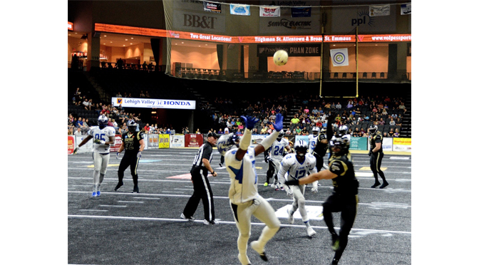 IT'S CLOSE, BUT NO CIGAR, FOR THE STEELHAWKS – by Diane Fleischman