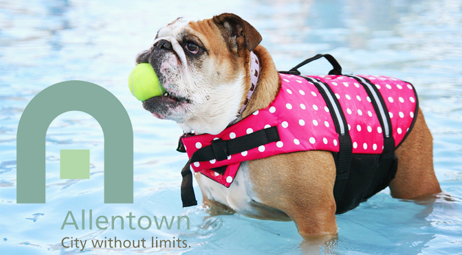 DOGGIE DIPS SCHEDULED AT MACK POOL