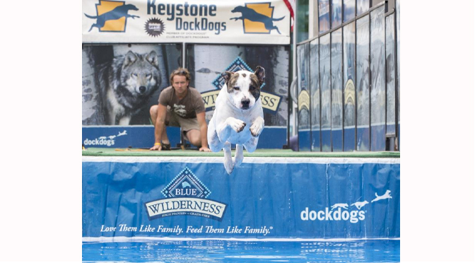 Step Outdoors Returns with Dock Dogs, Mud Run, Family Fishing Event & More June 1-2 SteelStacks, Bethlehem, PA