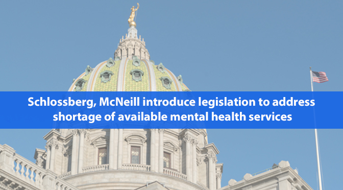 Schlossberg, McNeill introduce legislation to address shortage of available mental health services
